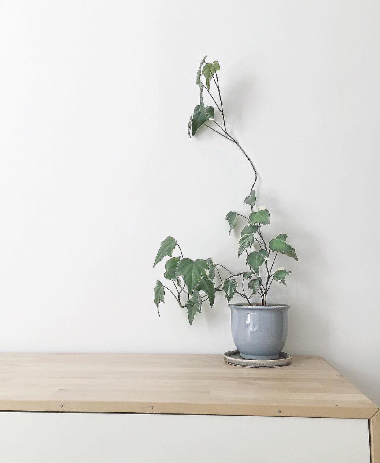 5 trucs minimalistes pour simplifier sa vie au quotidien vivre avec moins. Black Bedroom Furniture Sets. Home Design Ideas